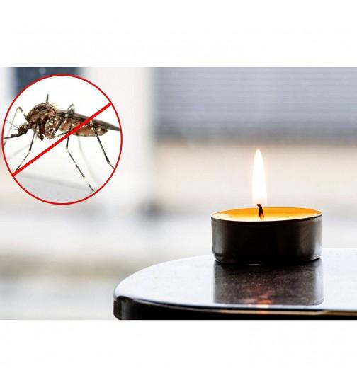 40er Set Citronella Kerzen Muckenschutz Insektenschutz Anti Mucken Duftlicht